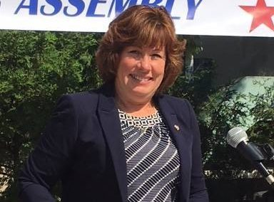 Marianne Buttenschon – NY State Assembly 119th District
